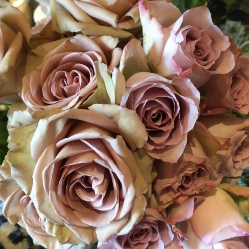 The Little Brick House | Decorative Home Accessories and Gifts | Dusky Pink Roses Close Up