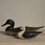 French Duck