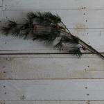 Fake Pine Stem Greenery