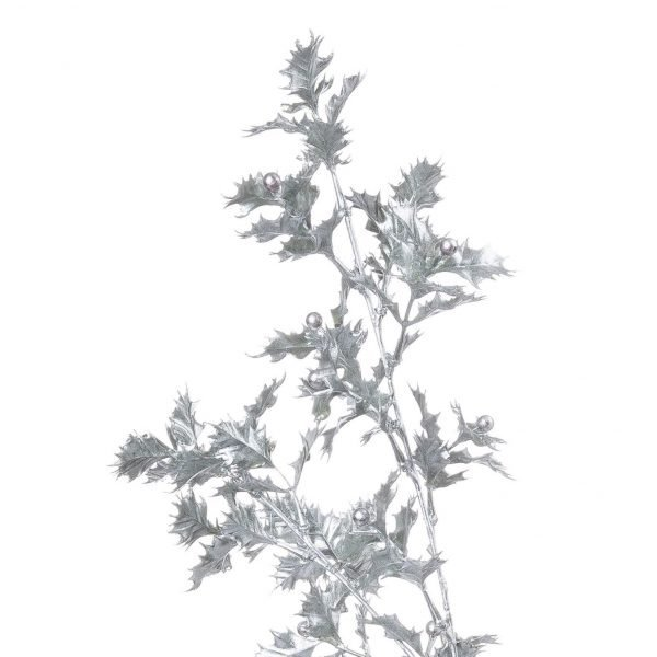 Silver holly