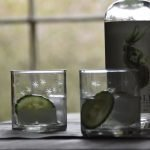 Etched Stars Water Glass