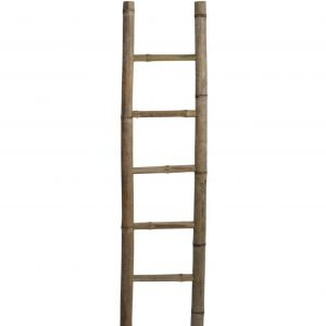 Bamboo Display Ladder